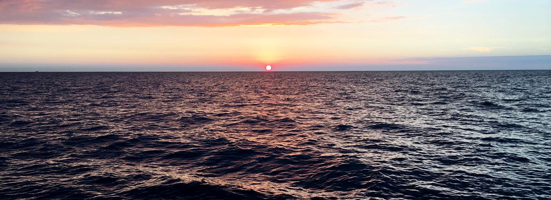 bureau études biologie marine normandie